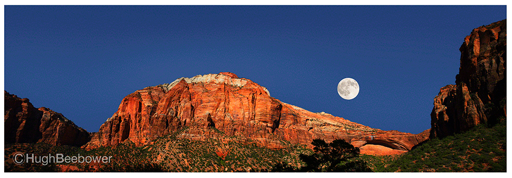 Zion Moon Rise | Beebower Productions