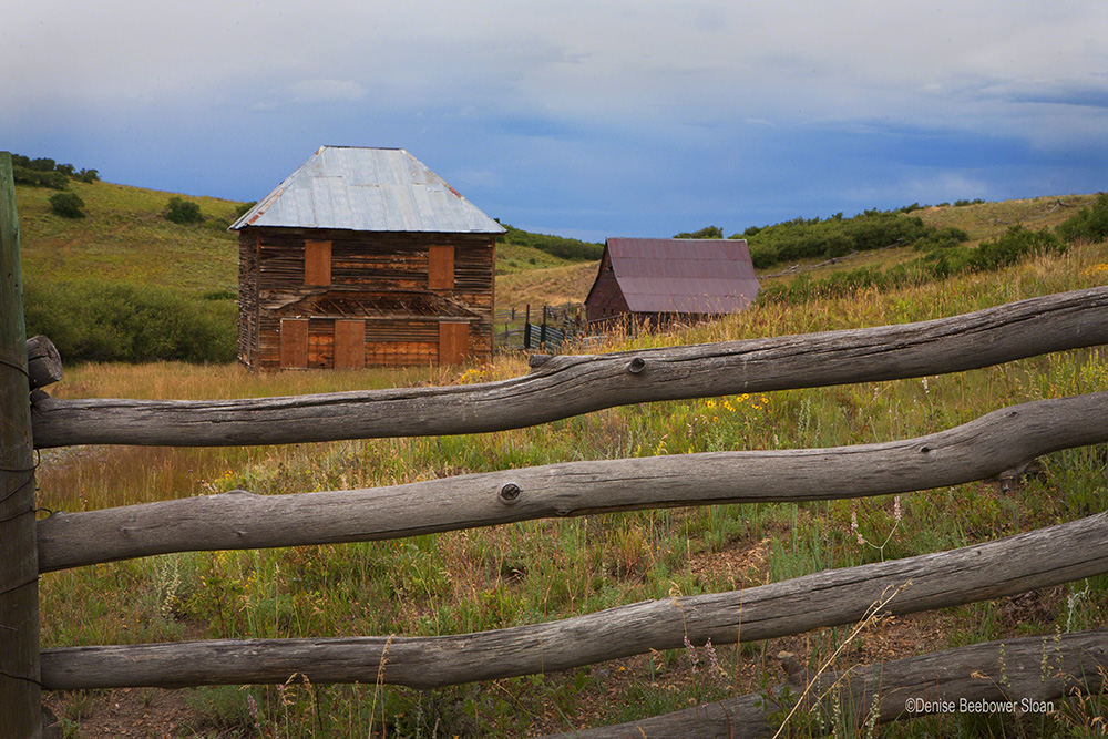 True Grit Ranch | Beebower Productions, Inc.