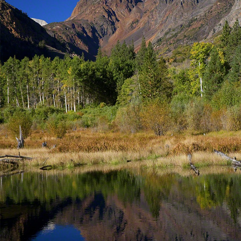 Fall in Lundy Canyon | Beebower Productions, Inc.